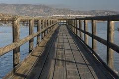Natural Park El Hondo Royalty Free Stock Photography