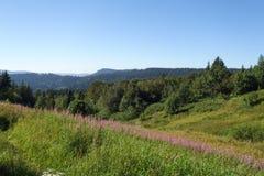 Natural park Feldbergsteig Stock Images