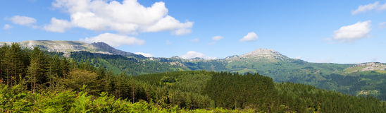 Natural park of Gorbeia Royalty Free Stock Photos
