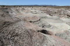 Natural Park of Ischigualasto or Valle de la Luna. Unesco, World Heritage Site Royalty Free Stock Photos