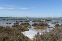 Natural Park of La Mata Stock Photo