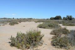 Natural Park of La Mata Stock Image