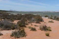 Natural Park of La Mata Royalty Free Stock Images