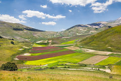 Natural park of Monti Sibillini. Italy Royalty Free Stock Images