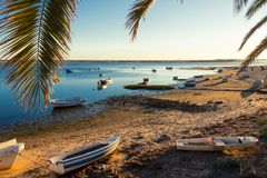 Natural Park Ria Formosa - Algarve - Portugal royalty free stock photo