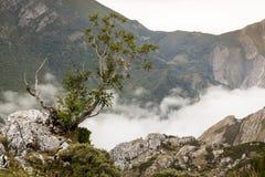 Natural Park of Somiedo. Asturias, Spain. Natural Park of Somiedo in the mountains of Asturias, Spain royalty free stock photo