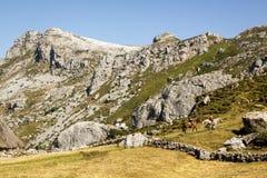 Natural Park of Somiedo. Asturias, Spain. Natural Park of Somiedo in the mountains of Asturias, Spain stock image