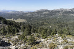 Natural parks in Spain, Sierra de las Nieves in the province of Malaga, Andalucia Stock Photography