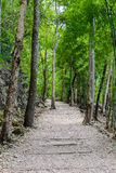 Natural path at the Hellfire Pass Trail Royalty Free Stock Photography