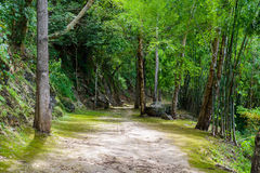 Natural path at the Hellfire Pass Trail Royalty Free Stock Image
