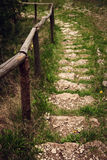 Natural path stair Stock Photo