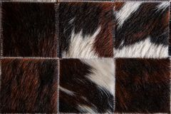 Natural pattern of white and light brown fur texture Stock Image