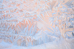Natural pattern on winter window Royalty Free Stock Photo