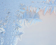Natural pattern on winter window Stock Photography