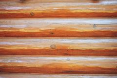 Natural pattern wood background. Wood wall background or texture royalty free stock photo