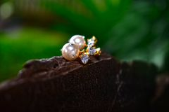 Natural pearl earrings Beautiful and expensive as jewelry For ladies. Natural pearl earrings stock photography