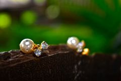 Natural pearl earrings Beautiful and expensive as jewelry For ladies. Natural pearl earrings stock image