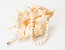 Natural pearl white beads Royalty Free Stock Images