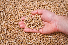 Natural pellet Stock Images