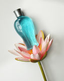 Natural perfume bottle. Bottle of natural scent perfume derived from flowers Royalty Free Stock Photo
