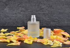 Natural perfume and rose petals on shale. Colorful and crisp image of natural perfume and rose petals on shale royalty free stock images