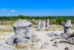 The natural phenomenon Pobiti Kamani, known as The Stone Forest Royalty Free Stock Images