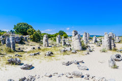 The natural phenomenon Pobiti Kamani, known as The Stone Forest Stock Photography