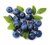 Natural Picked Blueberries Isolated Royalty Free Stock Image