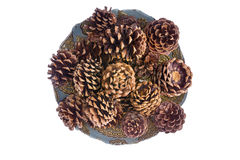 Natural Pine Cones in Center Table Plate Stock Photo