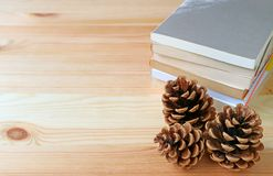 Natural pine cones with stack of books on light brown wooden table. Some free space for text and design Royalty Free Stock Image
