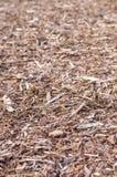 Natural pine tree bark Stock Photo