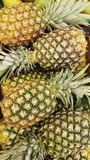 Natural pineapple from costa rica Stock Photography