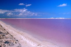 Natural Pink lagoon in Las Coloradas in Mexico. Famous spot for falmingo watching, mother nature beaty, touristic spot to see pink lagoon stock images