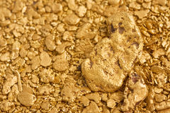 Free Natural Placer Gold Nuggets Royalty Free Stock Photo - 9209975