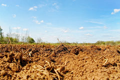 Natural plowed field. Stock Photos