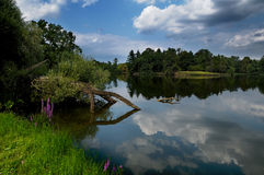 Natural pond and reflections. Beautiful natural pond with perfectly calm water reflecting blue sky and clouds Royalty Free Stock Images