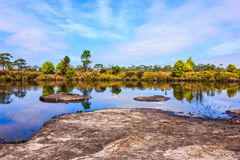 Natural ponds. Rock in natural ponds with blue sky and trees Stock Photography