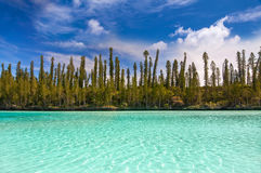 Natural pool of Oro Bay, Isle of Pines Royalty Free Stock Images