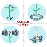 Natural power.  Set of flat vector icons. Set of flat vector icons. The sprout punching brick wall and growing up. Natural power Royalty Free Stock Images