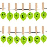 Natural product concept with green leaves hanging on rope in clo Stock Photography