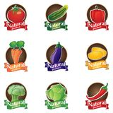 Natural product logo set. 100 natural product vector logo set stock illustration