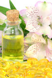 Natural Product. Stock Photography
