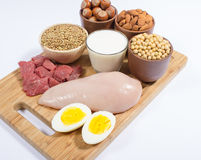 Natural products containing plant and animal proteins. Royalty Free Stock Images