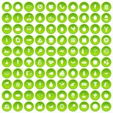 100 natural products icons set green. 100 natural products icons set in green circle isolated on white vectr illustration Royalty Free Stock Photo