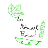Natural products sketch Royalty Free Stock Photo