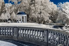 Natural public park in Strasbourg, infrared view, sunny day stock photos