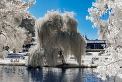 Natural public park in Strasbourg, infrared view, sunny day stock image
