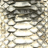 Natural python skin texture Royalty Free Stock Images