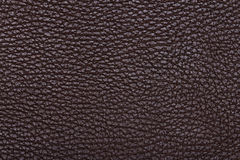 Natural qualitative brown leather texture Stock Photography