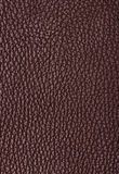 Natural qualitative brown leather texture Royalty Free Stock Photos